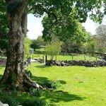 farm in glorious sunshine