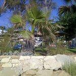 Отель из-за кустов с пляжа