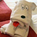 Daily towel animals for the kids