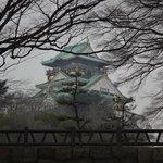大阪城公園から望む天守閣
