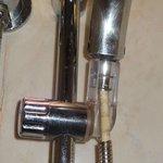 broken shower hose....