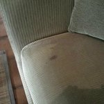 Stained Cushion in Living Area