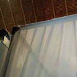 Torn Mosquito Netting