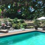 Prachtige tuin en heerlijk zwembad