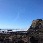 Yaquina Head tide pools