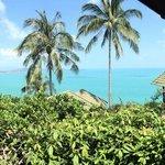 Blick vom Hotelgelände aufs Meer