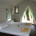 Tree Tops Jungle Lodge, a room.