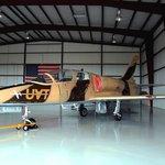 Albatross L39 Jet