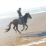 riding on the Diabat beach