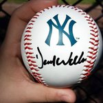 David Wells' Autograph @ Steinbrenner Field