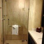 Standard Room Shower Stall 11/17/2013