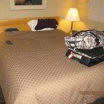Schlafzimmer mit Queensizebett