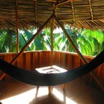 Hammock in the room over the dining area