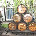 Barrels at Brugal Rum Factory Puerto Plata City February 2013