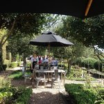 Mudbrick Winery Garden