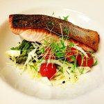 Salmon fillet special
