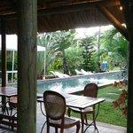 La piscine vue du bar restaurant