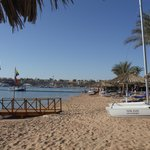 Beach at Hilton Sharm el Sheikh