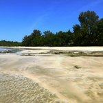 Beautiful Ngapali Beach