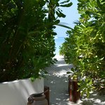 The path to the beach from our villa
