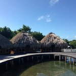 view of over the water bungalows