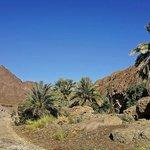 "Hatta Dry ""Pools""  : Wadi Hatta"