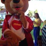Ursinhos na ceia de natal!