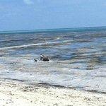 Jambiani: Marea 5