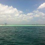 Zanzibar: Blu Safari 2