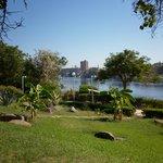Des jardins, vue sur Assouan