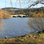 Bridge at Kenmore