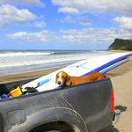 surf lessons with Rudy