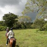 Horseback riding through the fields