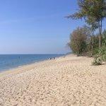 Mai Khao beach really isn't crowded!