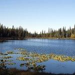 Lago na propriedade