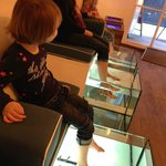 A memorable 10 minute fish spa experience for my girls