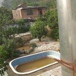 Der Garten incl. Pool