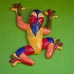 Eldemires frog