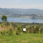 Vista desde Habitación 1