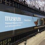 Перед входом в музей.