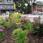 The flower garden across the street from Mr G's
