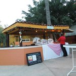 The Oasis Grill