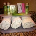 Bathroom toiletries bath and body works shampoo conditioner and lotion