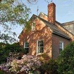 Azaleas on house foundation