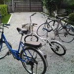 Bikes for hire