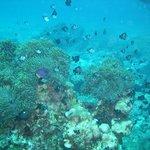unter Wasser 2