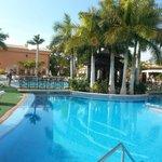 beautiful and peaceful pool area