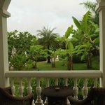 Vue de la chambre sur le jardin