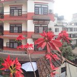 Panorama view from outside room 311