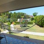Jardin vu de notre terrasse
